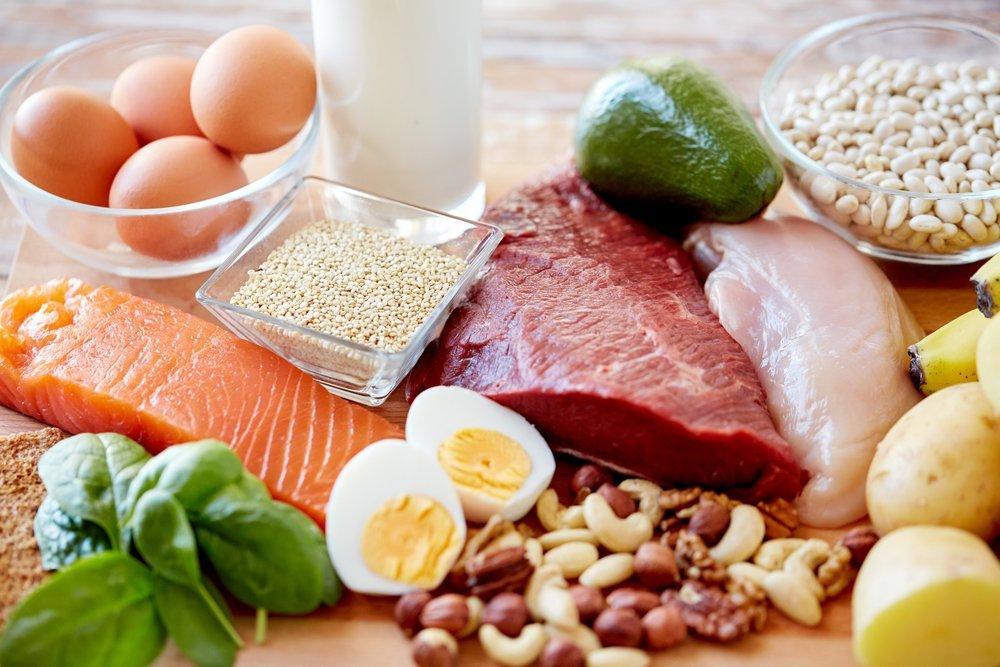 Dopamine-entrainement-prive-dietes-elevees-proteines
